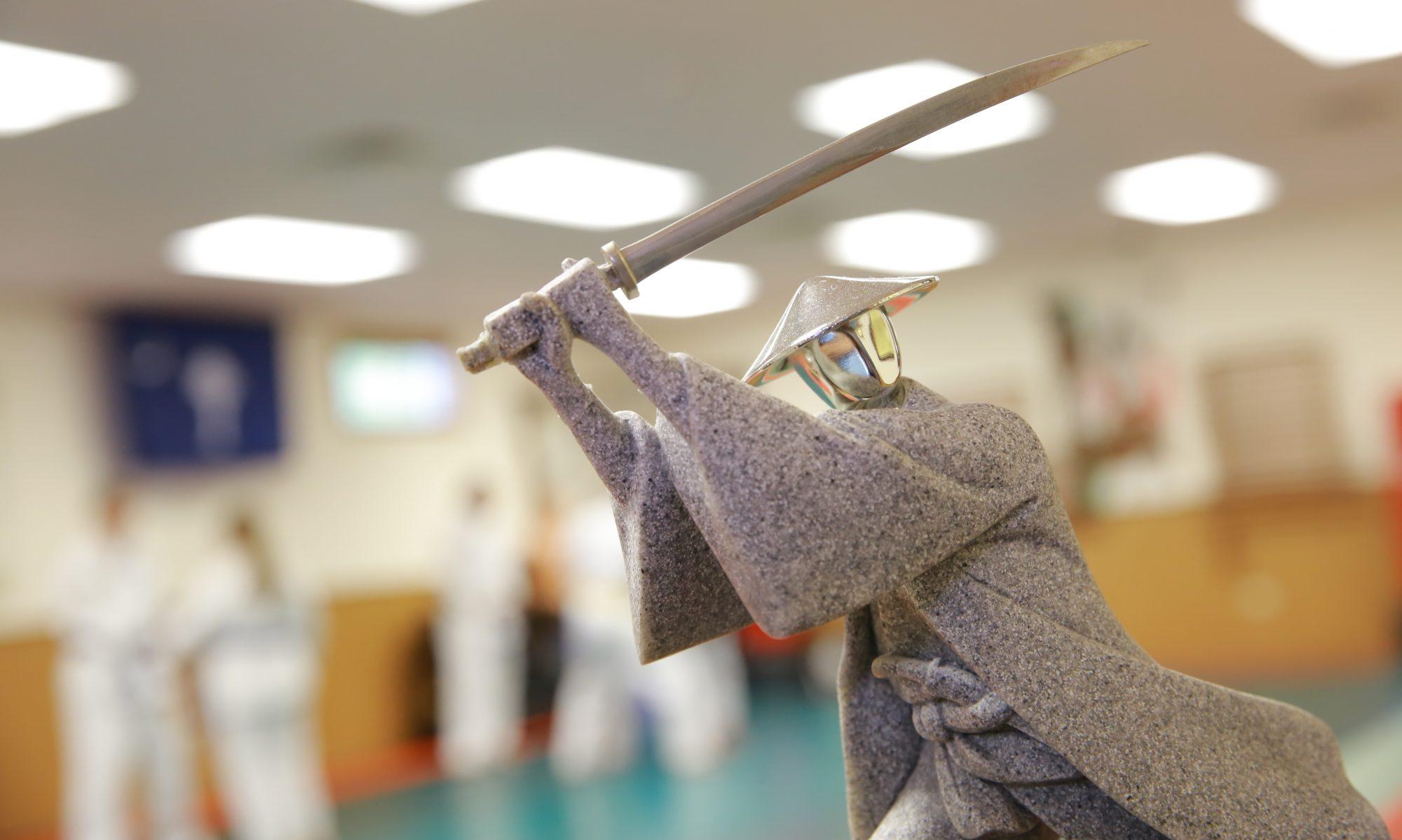 Wyndham Academy of Self Defense